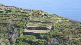 Ligurian coast line Stock Photography