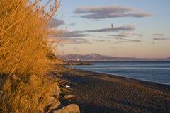 Ligurian Riviera at sunset. Beautiful colors in the Ligurian Riviera at sunset stock image
