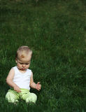Liitle boy on a grass. Little sits on a green grass stock image