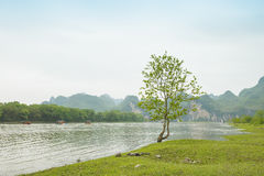 Lijiang River on both sides of the pastoral scenery Royalty Free Stock Photo