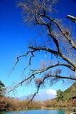 Lijiang, Yunnan, China Imagen de archivo