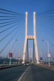 lijiatuo chongqing моста Стоковое Изображение RF