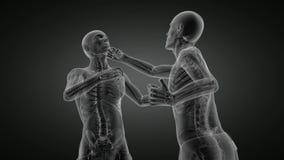 Lijn het In dozen doen mensen x-ray aftasten stock illustratie