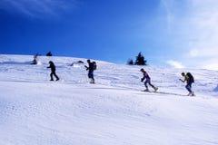In lijn op de sneeuw Stock Foto