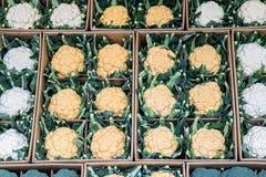 Lijn van bloemkolen op opslag bij markt Stock Afbeeldingen