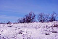 Lijn van bomen langs heuvel die met sneeuw op de achtergrond van blauwe bewolkte zonnige hemel wordt behandeld stock foto