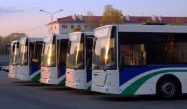 Lijn van bussen Stock Foto