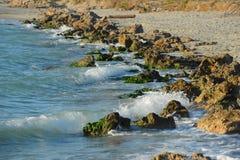 Lijn van de het Strand de rotsachtige kust van Venetië Royalty-vrije Stock Foto's