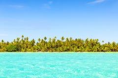 Lijn van kokosnotenpalmen met turkooise overzees op tropisch strand Stock Afbeeldingen