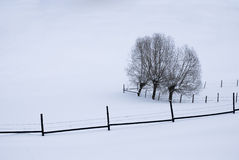 Lijnen in de sneeuw Royalty-vrije Stock Foto's
