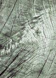 Lijnen op retro oud eiken hout Royalty-vrije Stock Afbeeldingen