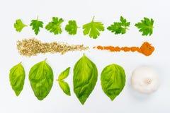 Lijnen van verschillend voedsel Royalty-vrije Stock Afbeeldingen