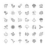 Lijnpictogrammen Bloemen, installaties en bomen Royalty-vrije Stock Afbeelding