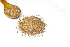 Lijnzaad of Flex Seeds op witte achtergrond Stock Foto