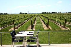 Lijst bij wijngaard royalty-vrije stock foto's