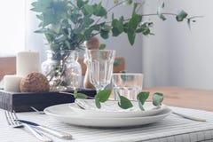 Lijst die met takken van eucalyptus plaatsen stock afbeelding