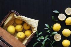Lijst die met verscheidenheidsvorm plaatsen van citroenen en citroenenbladeren Royalty-vrije Stock Afbeelding