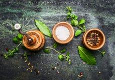 Lijst of het koken kruiden in houten kommen op rustieke achtergrond Royalty-vrije Stock Fotografie