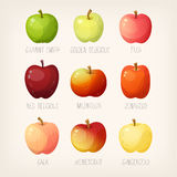 Lijst van appelen royalty-vrije illustratie