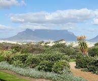 Lijstberg Kaapstad stock afbeeldingen