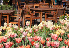 Lijsten, stoelen en tulpen in de tuin. royalty-vrije stock foto's