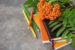 Lijsterbessentak, notitieboekjes, potloden stock afbeelding