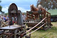 Lijstzaag door paarden wordt aangedreven dat Stock Fotografie