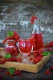 Likör av den röda vinbäret i exponeringsglaset Royaltyfri Fotografi