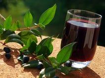 Likör der traditionellen Beere von Sardinien Lizenzfreies Stockbild