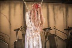 Lik som framme hänger av ett hounted hus Royaltyfria Foton