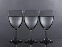 lika fyllda exponeringsglas tre water wine Royaltyfri Bild