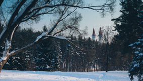 Lika un château dans la forêt image libre de droits
