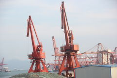 Like birds crane in SHENZHEN Port Stock Images