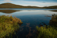 Like a mirror. A lake in Lapland with clear water royalty free stock images
