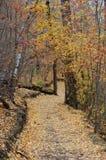 likwidacja jesieni śladu wędrownej Obrazy Royalty Free