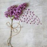 Lilás bonito em um fundo de madeira Foto de Stock