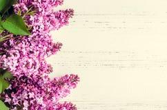 Lilás bonito em um fundo de madeira Fotos de Stock Royalty Free