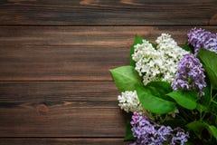 Lilás branco em um fundo de madeira marrom Imagem de Stock Royalty Free