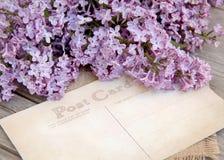 Lilás e cartão na madeira resistida Foto de Stock Royalty Free