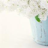 Lilás em um vaso azul de madeira Foto de Stock Royalty Free