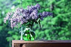 Lilás em um vaso na janela Imagens de Stock Royalty Free