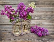 lilás Roxo-azul em uma tabela de madeira Imagens de Stock