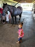 Lil-Cowgirl lizenzfreie stockfotografie