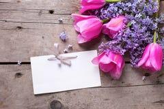 Lila aromática violeta, flores rosadas de los tulipanes y Empty tag en v Fotos de archivo libres de regalías