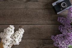 Lila Blüte auf rustikalem hölzernem Hintergrund mit leerem Raum für Grußmitteilung Beschneidungspfad eingeschlossen Lizenzfreie Stockfotografie