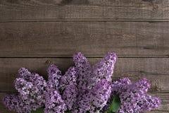 Lila Blüte auf rustikalem hölzernem Hintergrund mit leerem Raum für Grußmitteilung Beschneidungspfad eingeschlossen Lizenzfreies Stockfoto