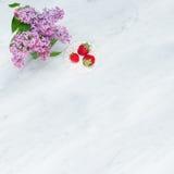 Lila Blütenniederlassungen und -erdbeeren auf Carrara marmorn counte Stockbilder