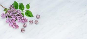 Lila Blütenniederlassungen und Glücksbälle auf Carrara marmorn entgegengesetzt Stockfoto
