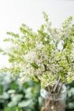 Lila blanca del manojo en el florero de cristal Flores del ramo en fondo ligero wallpaper Árboles florecientes de la primavera imagen de archivo libre de regalías
