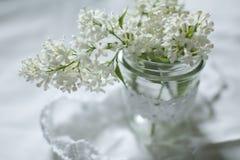 Lila blanca en el florero en la ventana Fotografía de archivo